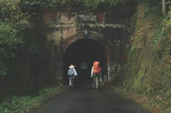熊井隧道 ~くまいずいどう~