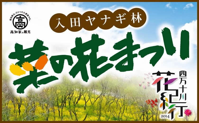 ~四万十川花紀行~ 入田ヤナギ林 菜の花まつり