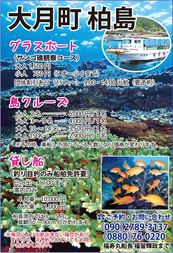 11-竜串グラスボート